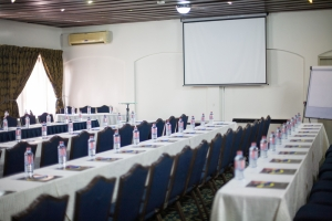 Meetings and Conference